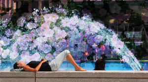 Flowers Splash - RF Stock Photo