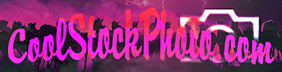 pink logo Photos Gallery