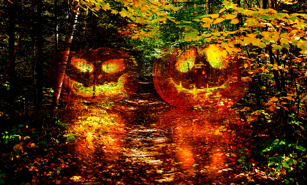 Halloween Scary Wood 1 - RF Stock Photo