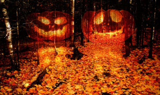 Halloween Scary Wood 2 - RF Stock Photo