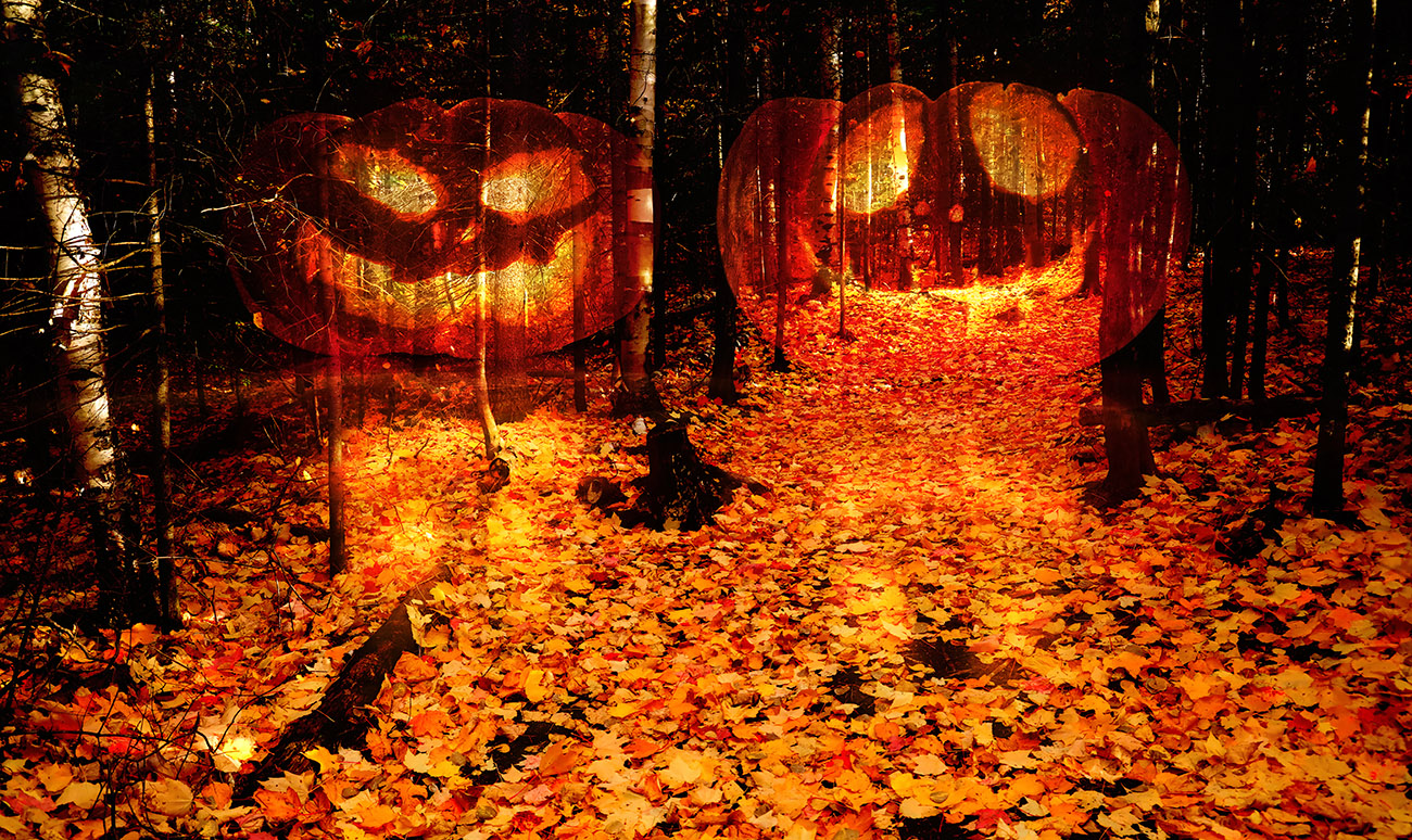 Halloween Scary Wood 2 - RF Stock Photo