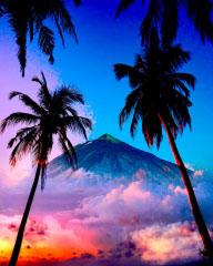 Beautiful Caribbean Paradise 01 - RF Stock Photo