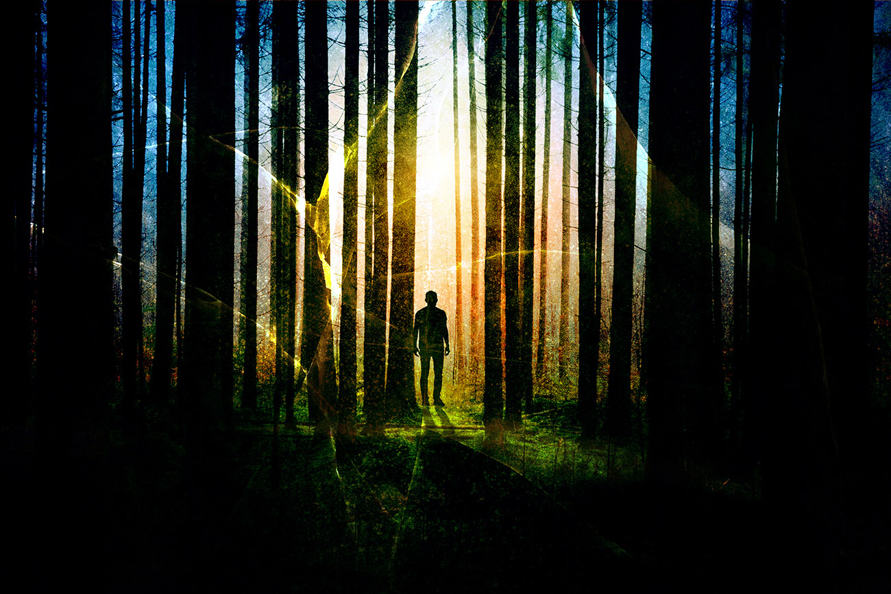 Surreal Apocalyptic Woods 01 - RF Stock Photo