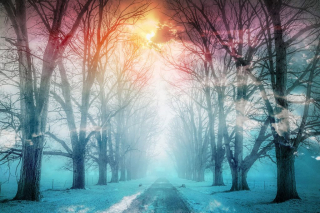 Wintery Road 02 - RF Stock Photo