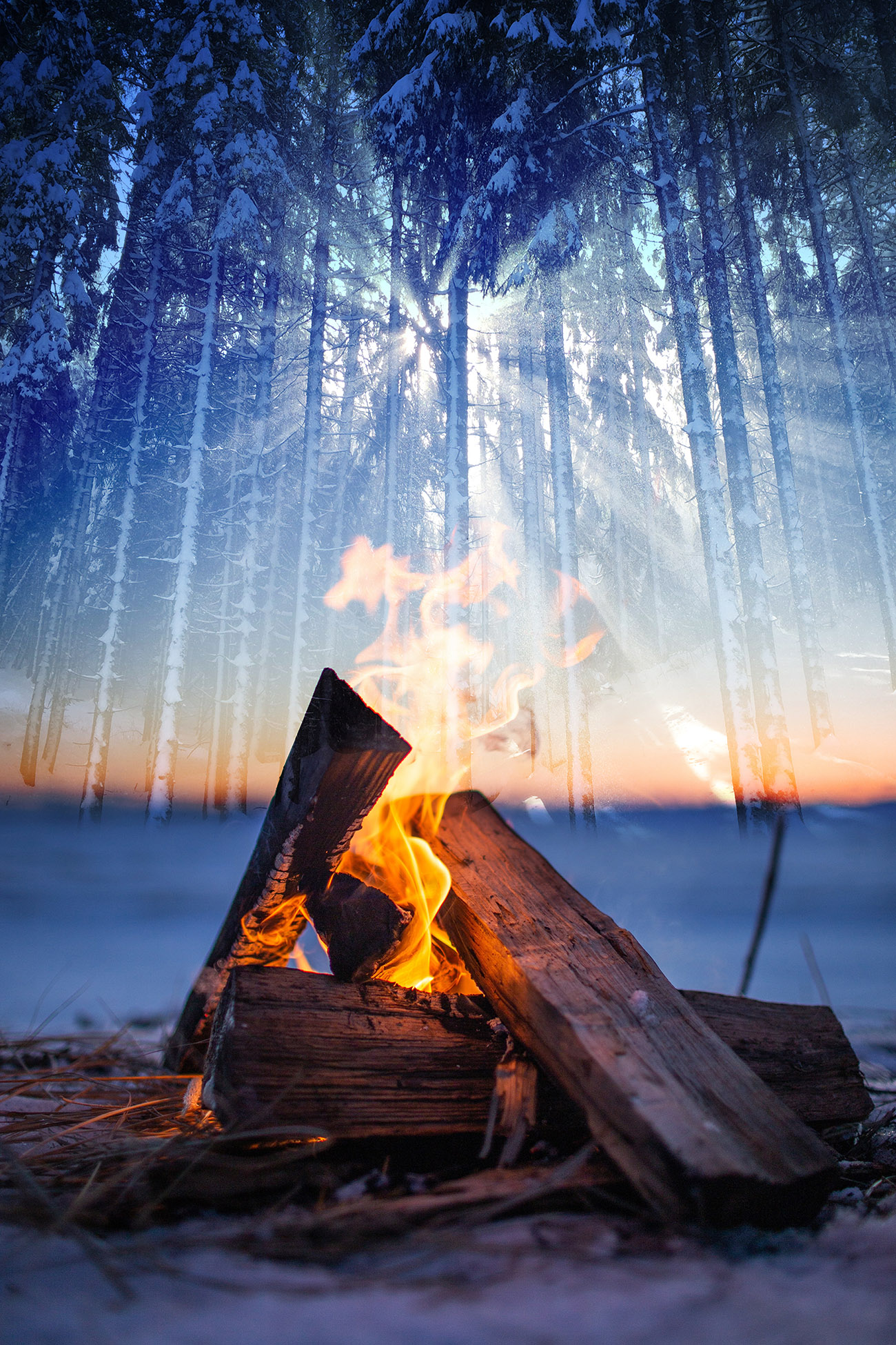 Wintery Wood Fire 01 - RF Stock Photo