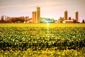 Modern Farmland and Agriculture Real Estate - RF Stock Photo